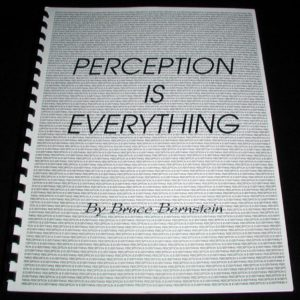 Perception is Everything by Bruce Bernstein
